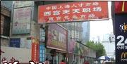 上海西宫游戏