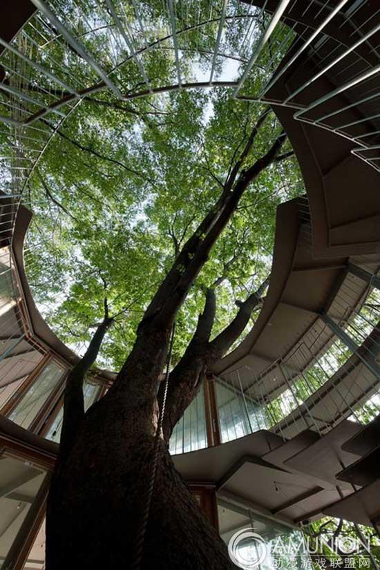 国外儿童乐园设计案例欣赏—日本树屋儿童乐园